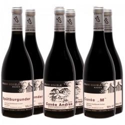 Rotwein-Probierkiste